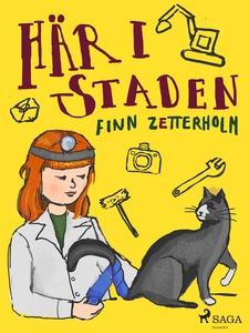 Här i staden (e-bok) av Finn Zetterholm