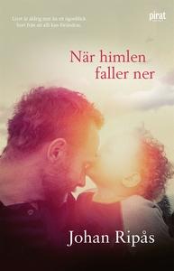 När himlen faller ner (e-bok) av Johan Ripås