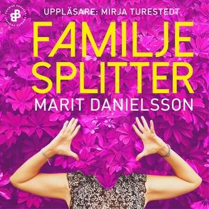 Familjesplitter (ljudbok) av Marit Danielsson