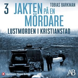 Lustmorden i Kristianstad (ljudbok) av Tobias B