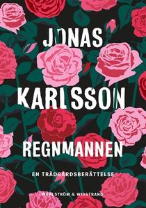 Regnmannen (e-bok) av Jonas Karlsson