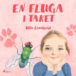 En fluga i taket (ljudbok) av Ulla Lundqvist