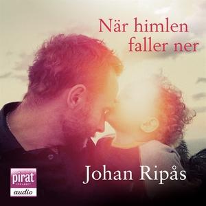 När himlen faller ner (ljudbok) av Johan Ripås