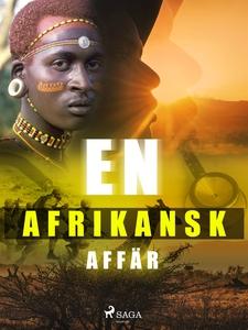 En afrikansk affär (e-bok) av Lars Widding