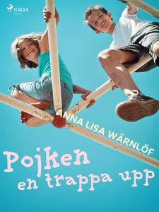 Pojken en trappa upp (e-bok) av Anna Lisa Wärnl