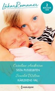Sista pusselbiten/Kärlekens val (e-bok) av Caro