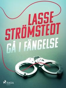 Gå i fängelse (e-bok) av Lasse Strömstedt