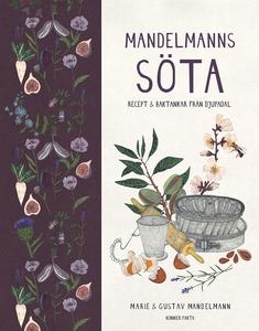 Mandelmanns söta : recept och baktankar från Dj