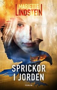 Sprickor i jorden (e-bok) av Mariette Lindstein