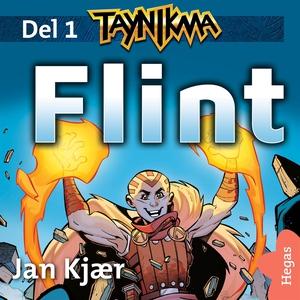 Flint (ljudbok) av Jan Kjaer