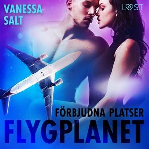 Förbjudna platser: Flygplanet (ljudbok) av Vane
