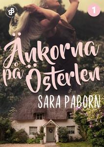 Änkorna på Österlen (e-bok) av Sara Paborn