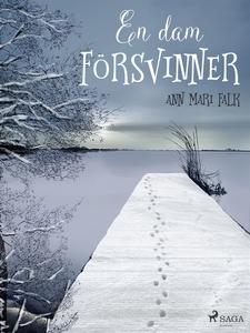 En dam försvinner (e-bok) av Ann Mari Falk