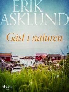 Gäst i naturen (e-bok) av Erik Asklund