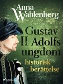 Gustav II Adolfs ungdom: historisk berättelse