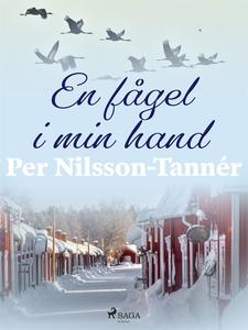 En fågel i min hand (e-bok) av Per Nilsson-Tann