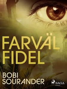 Farväl Fidel (e-bok) av Bobi Sourander