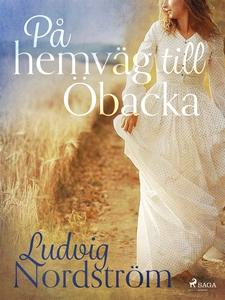På hemväg till Öbacka (e-bok) av Ludvig Nordstr