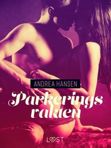 Parkeringsvakten - erotisk novell (e-bok) av An