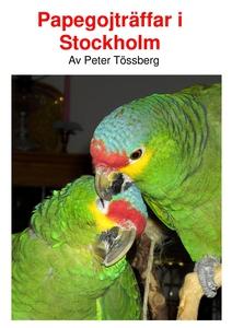 Papegojträffar i Stockholm. (e-bok) av Peter Tö