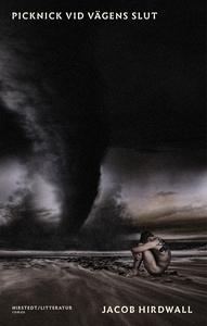 Picknick vid vägens slut (e-bok) av Jacob Hirdw