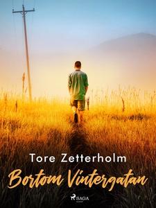 Bortom Vintergatan (e-bok) av Tore Zetterholm