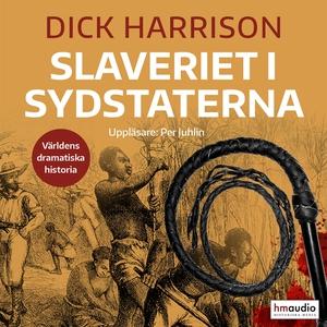 Slaveriet i Sydstaterna (ljudbok) av Dick Harri