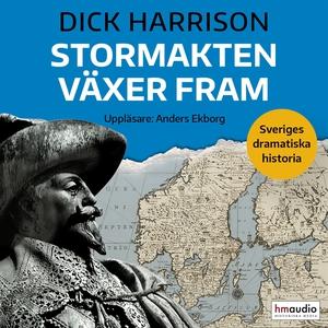 Stormakten växer fram (ljudbok) av Dick Harriso