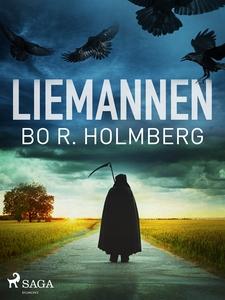 Liemannen (e-bok) av Bo R. Holmberg