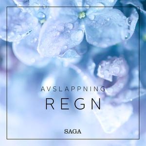 Avslappning - Regn (ljudbok) av Rasmus Broe
