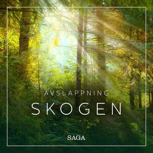 Avslappning - Skogen (ljudbok) av Rasmus Broe