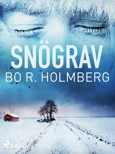 Snögrav (e-bok) av Bo R. Holmberg