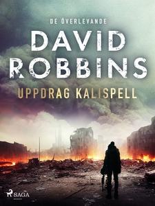 Uppdrag Kalispell (e-bok) av David Robbins