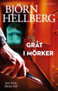 Gråt i mörker (e-bok) av Björn Hellberg