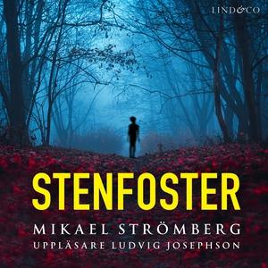 Stenfoster (ljudbok) av Mikael Strömberg