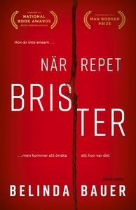 När repet brister (e-bok) av Belinda Bauer
