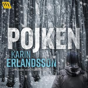 Pojken (ljudbok) av Karin Erlandsson
