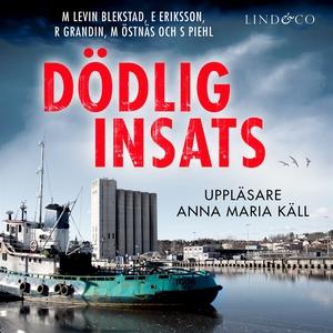 Dödlig insats (ljudbok) av Erik Eriksson, Marga