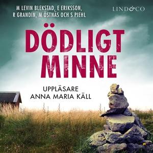 Dödligt minne (ljudbok) av Erik Eriksson, Marga