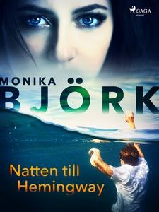 Natten till Hemingway (e-bok) av Monika Björk