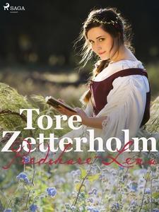 Predikare-Lena (e-bok) av Tore Zetterholm