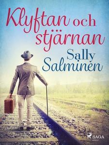Klyftan och stjärnan (e-bok) av Sally Salminen