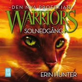 Warriors 2 - Solnedgång