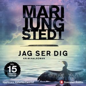 Jag ser dig (ljudbok) av Mari Jungstedt