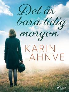 Det är bara tidig morgon (e-bok) av Karin Ahnve