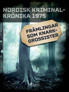 Främlingar som knarkgrossister (e-bok) av Diver