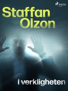 I verkligheten (e-bok) av Staffan Olzon