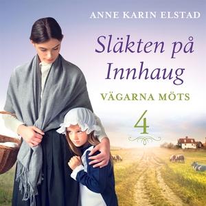 Vägarna möts: En släkthistoria (ljudbok) av Ann