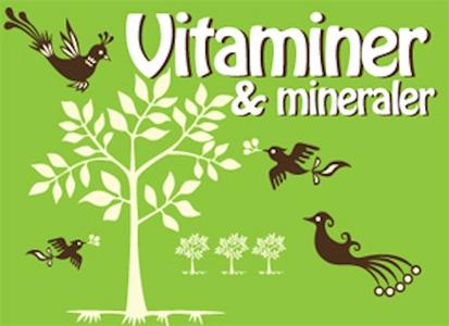 Hälsoserien : Vitaminer och mineraler (e-bok) a