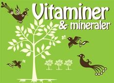 Hälsoserien : Vitaminer och mineraler (PDF)